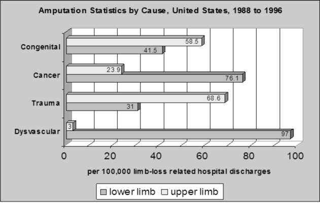 Amputation Statistics by Cause from the National Limb Loss Information Center, 2006